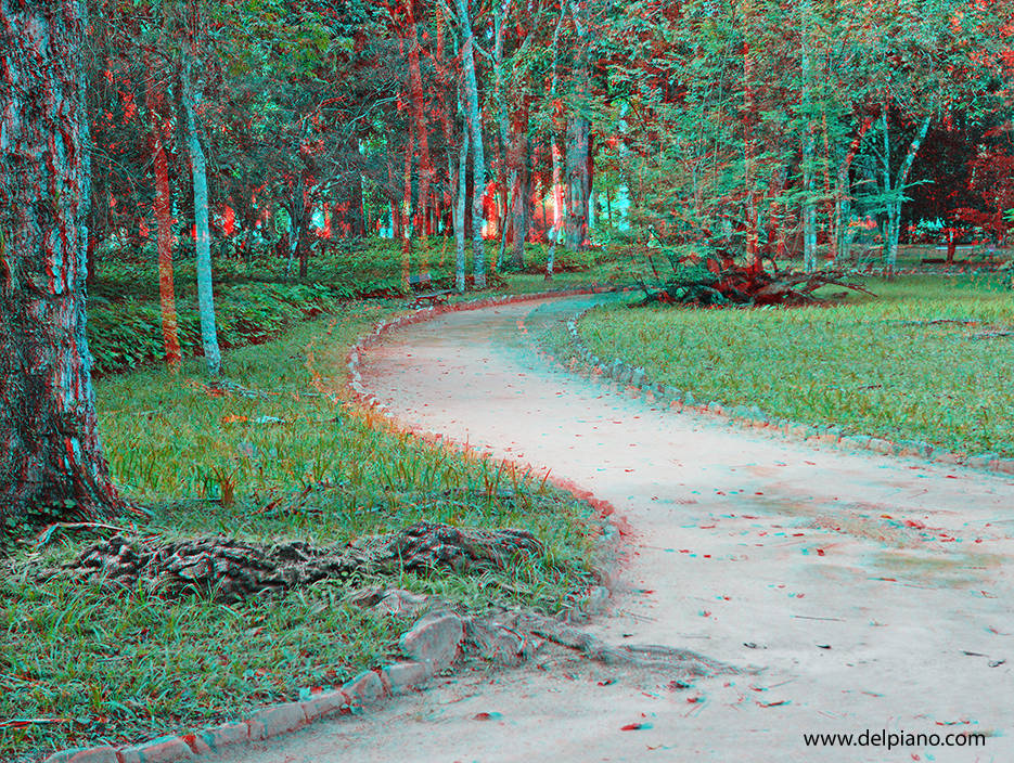 3D stereo Anaglyphs of Nature